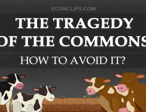 The Tragedy of The Commons | How to avoid it?